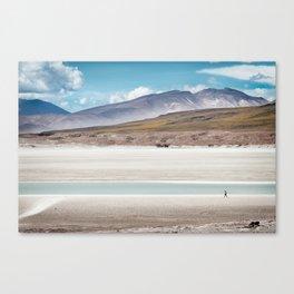 Immensity of Desert Canvas Print
