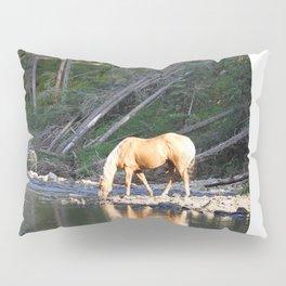Gelding in Golden Light Pillow Sham