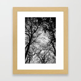 Journey to the north II. Framed Art Print