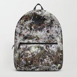 Arctic lichen Backpack
