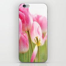 I Dream in Pink iPhone & iPod Skin