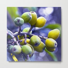 SICILIAN FRUITS Metal Print