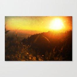 Denva Canvas Print