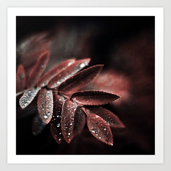 Touch of red Art Print