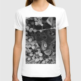 Nocopseudobacillum T-shirt