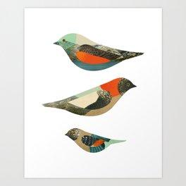 Three Birds Art Print