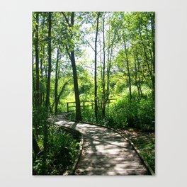 Wooden Path Canvas Print