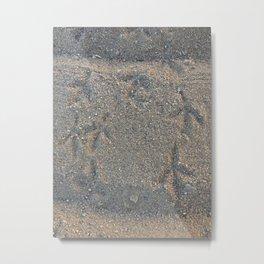 Dirt - Bird Feet Metal Print