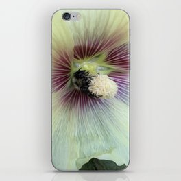 Bee Amazing iPhone Skin