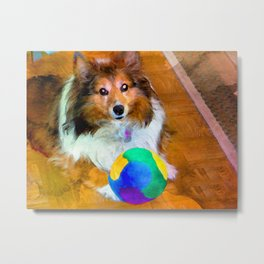 Sheltie with Ball Metal Print
