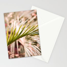 Sunkissed Palm Stationery Cards