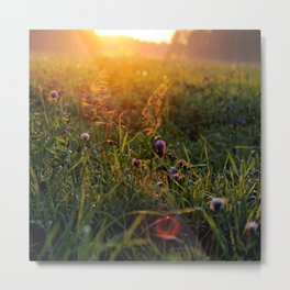 all we'll be is dust in the wind Metal Print