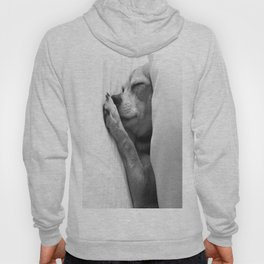 Colorless Dream Hoody