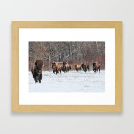Running Wild Framed Art Print