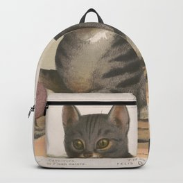Vintage Illustration of a Domestic Cat (1872) Backpack