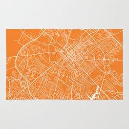 Lexington map orange Rug