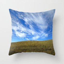 Colorado, 3 Throw Pillow