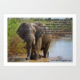 Elephant in Water Art Print