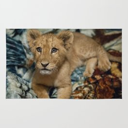 Lambert the Lion and His Blanket Rug