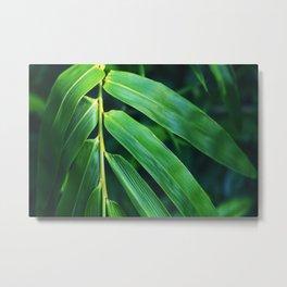 Bamboo Leaf Zen Poster II Metal Print