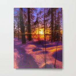 Wintry naturepath Metal Print