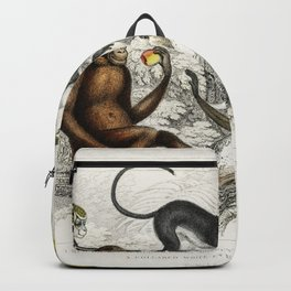 Red Orang-Outang Diana Monkey Guereza Monket Veried Monkey Collared White-Eyelid Monkey and Green Mo Backpack