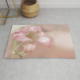 Faded Daylily Rug