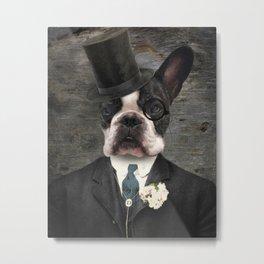 Sir Duncan - Boston Terrier Portrait Metal Print