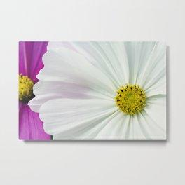 Sommerblumen Metal Print