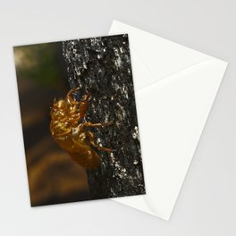 A Cicada Shedding Stuck On A Burnt Tree Stationery Cards