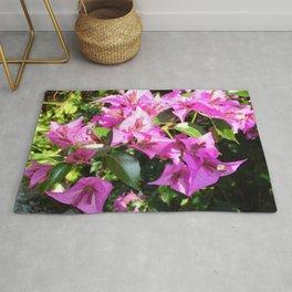 Purple Pink Bougainvillia In Blossom  Rug