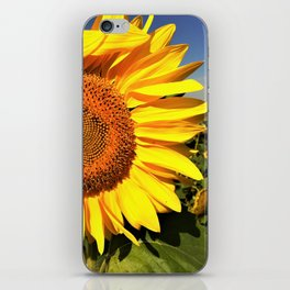 Sunflower fields forever iPhone Skin