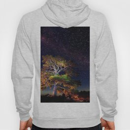 Stars and A Tree Hoody