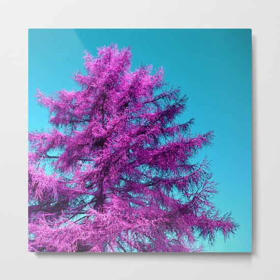 purple fir - tree I Metal Print