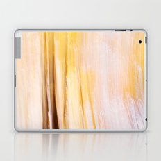 Indian Summer 3 Laptop & iPad Skin