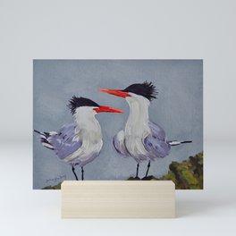 Two Royal Terns Mini Art Print