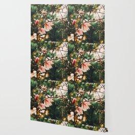 Nature Wallpaper Wallpaper