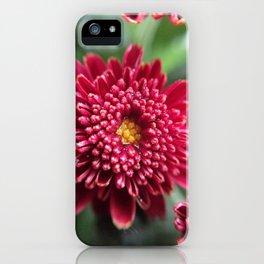 Dew iPhone Case