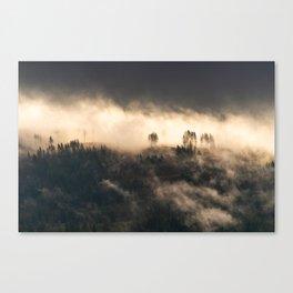 A Beautiful Destruction Canvas Print