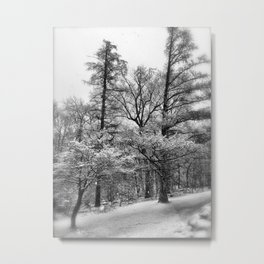 Pines and Snow Metal Print
