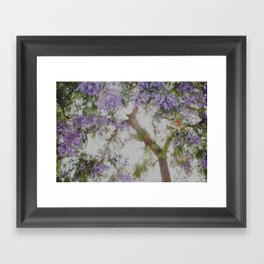 Purple Dream Framed Art Print