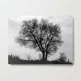 Nature shape Metal Print