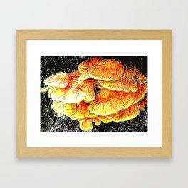 Fried Chicken of the Woods Framed Art Print