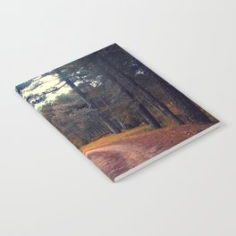 in the wood Notebook