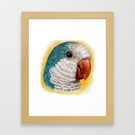 Blue quaker parrot realistic painting Framed Art Print