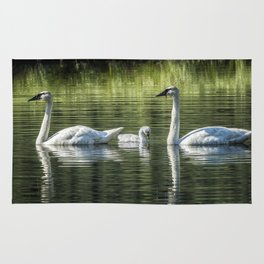 Family of Swans, No. 2 Rug