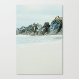 Washed rocks Canvas Print