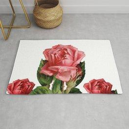 ANTIQUE VINTAGE ART PINK ROSES FLOWERS Rug
