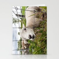 lamb Stationery Cards featuring lamb by Marcel Derweduwen