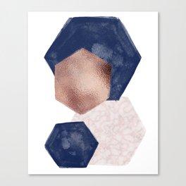 Blush Pink and Indigo Hex III Canvas Print